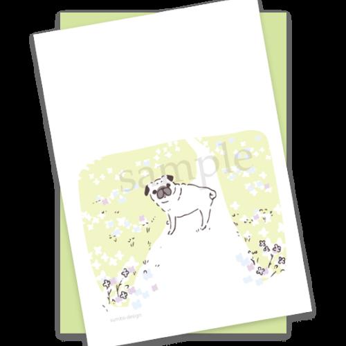 postcards-49