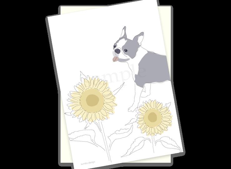postcards-07
