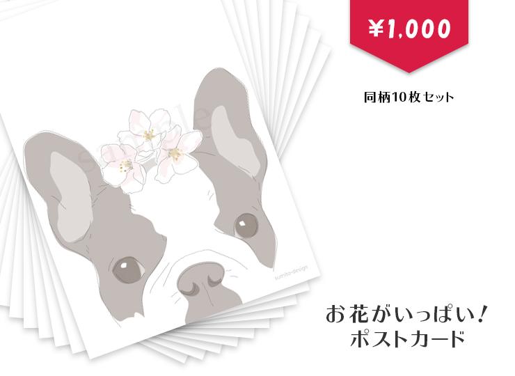 postcards-10set